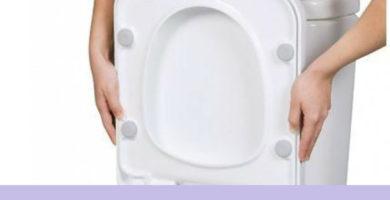 Tapa WC Roca Dama